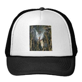Milk Weed Pods Trucker Hat