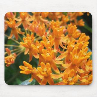 Milkweed anaranjado de Jocelyn Burke Alfombrillas De Ratón