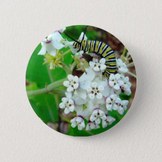 Milkweed and Monarch Button