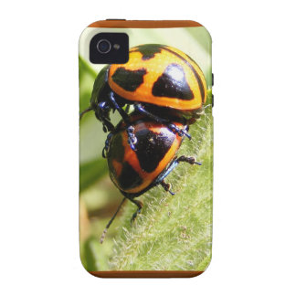 Milkweed Beetles ~ iPhone 4 CaseMate Tough case iPhone 4 Cover