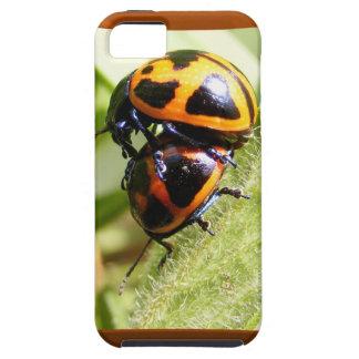 Milkweed Beetles ~ iPhone 5 CaseMate case