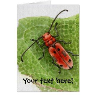Milkweed Borer Beetle -customizeable card card