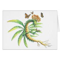 Milkweed Dragon