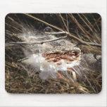 Milkweed Mousepad