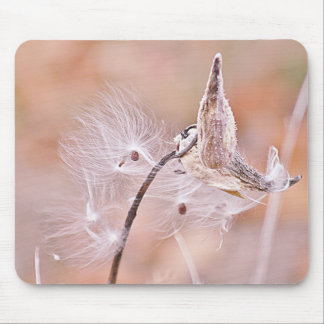 Milkweed pods photo mouse pad
