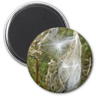 Milkweed Seeds Coordinating Items Magnet