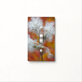 Milkweed seeds in autumn, Canada Light Switch Cover