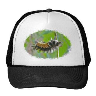 Milkweed Tussock Moth Caterpillar Items Trucker Hat