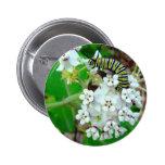 Milkweed y monarca pins