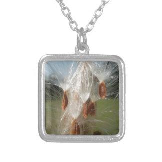 Milkweeds Floating.jpg de la flora y de la fauna d Collares Personalizados
