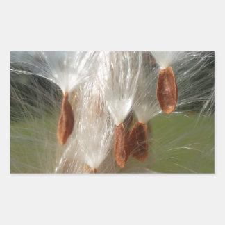 Milkweeds Floating.jpg de la flora y de la fauna Pegatina Rectangular