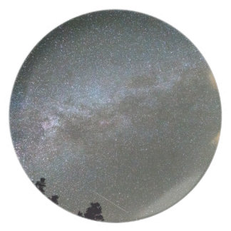 Milky Way Perseid Meteor Shower Plate