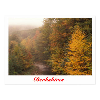 Mill Brook Autumn, Berkshires Stream Postcard
