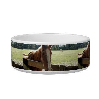 Mill Creek Horses Bowl