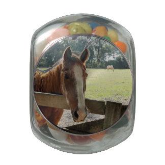 Mill Creek Horses Glass Jars