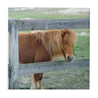 Mill Creek Pony Tile