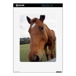 Mill Creek Rescue Horse iPad Decals