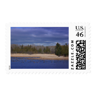 Mill Pond Postage Stamps