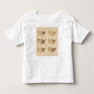 Milla de 207 Manufactures/sq T-shirts