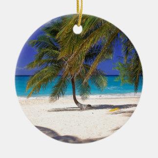 Milla tropical Gran Caimán de la isla siete Adornos De Navidad