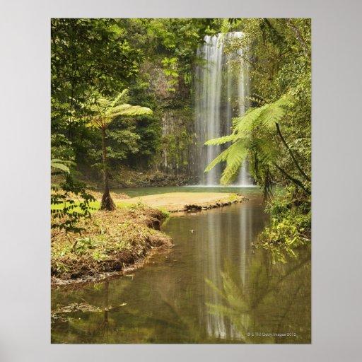 Millaa Millaa Falls, Atherton Tableland Poster
