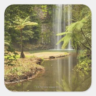Millaa Millaa Falls, Atherton Tableland Square Sticker