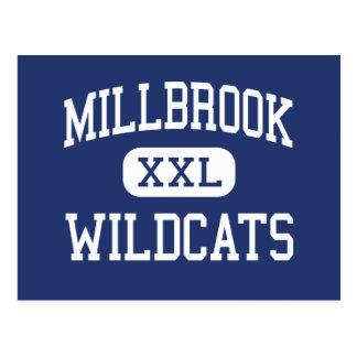 Millbrook - gatos monteses - alto - Raleigh Tarjetas Postales