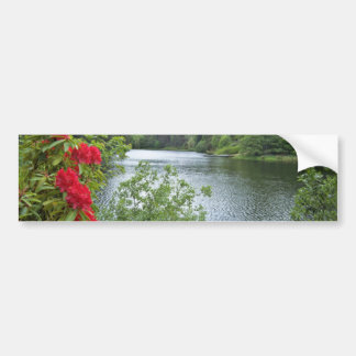 Millburies Lake, Moray, Scotland  flowers Bumper Sticker