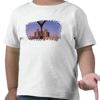 Millennium Bridge, Lowry Centre, Salford Tee Shirts