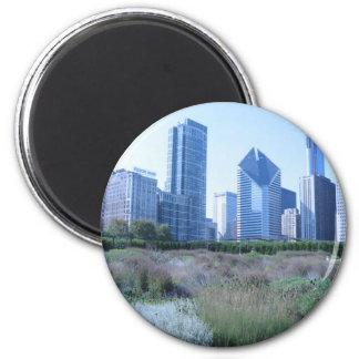 Millennium Park Magnet