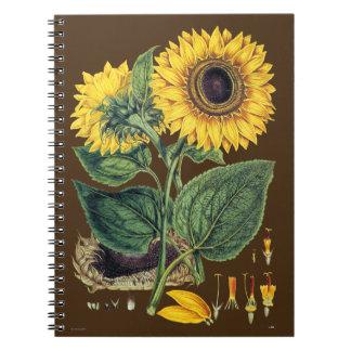 Miller: Sunflower Notebook