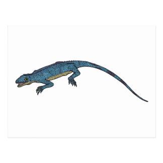 Millerosaurus Postcard