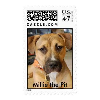 Millie el sello del hoyo