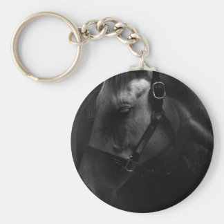 Million Dollar Tapit Filly Keychain