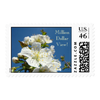 Million Dollar View Stamps White Spring Blossoms