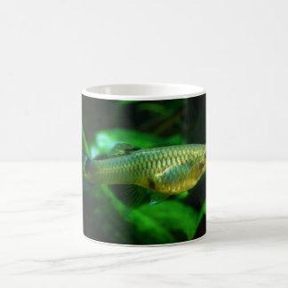 Millionfish or Guppy Poecilia Reticulata Coffee Mug