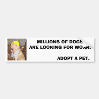 MILLIONS OF DOGS ARE LOOKING FOR WORK. CAR BUMPER STICKER