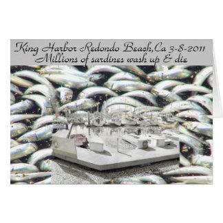 Millions of Sardines 3-8-2011_ Card