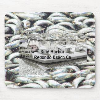 Millions of Sardines 3-8-2011_ Mouse Pad