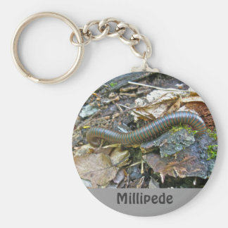 Millipede Series Items Key Chains