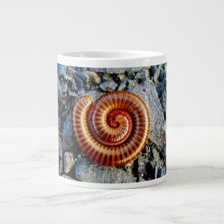 Millipede Trigoniulus Corallinus Curled Arthropod 20 Oz Large Ceramic Coffee Mug