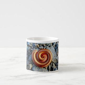 Millipede Trigoniulus Corallinus Curled Arthropod 6 Oz Ceramic Espresso Cup