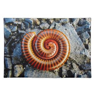 Millipede Trigoniulus Corallinus Curled Arthropod Cloth Placemat