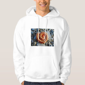Millipede Trigoniulus Corallinus Curled Arthropod Hooded Sweatshirt