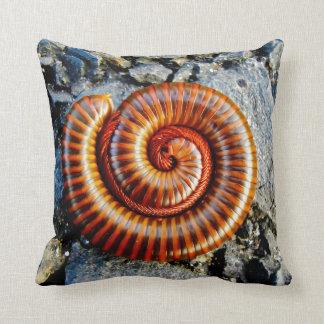 Millipede Trigoniulus Corallinus Curled Arthropod Pillow