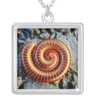 Millipede Trigoniulus Corallinus Curled Arthropod Square Pendant Necklace