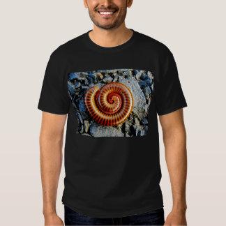 Millipede Trigoniulus Corallinus Curled Arthropod Tee Shirts
