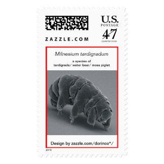 Milnesium tardigradum: tardigrade/ water bear postage