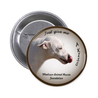 Milo Kiss  Madison Animal Rescue Foundation Pin