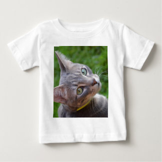 Milo the Silver Tabby T Shirt
